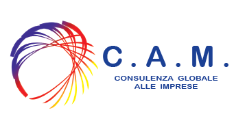 C.A.M Consulting